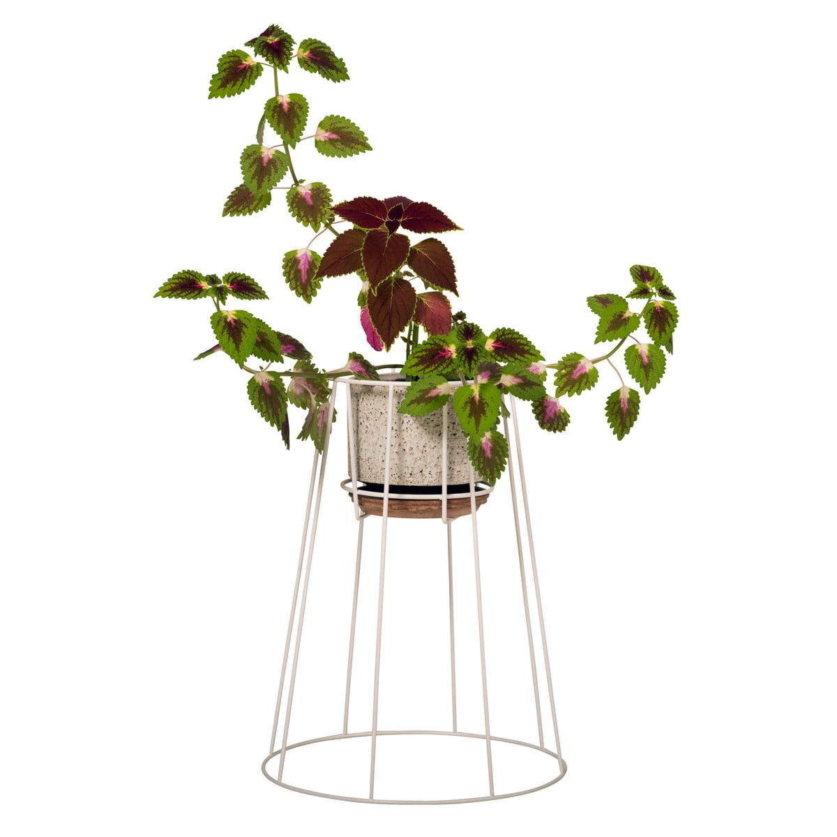 support pour pot de fleur de ok design. Black Bedroom Furniture Sets. Home Design Ideas