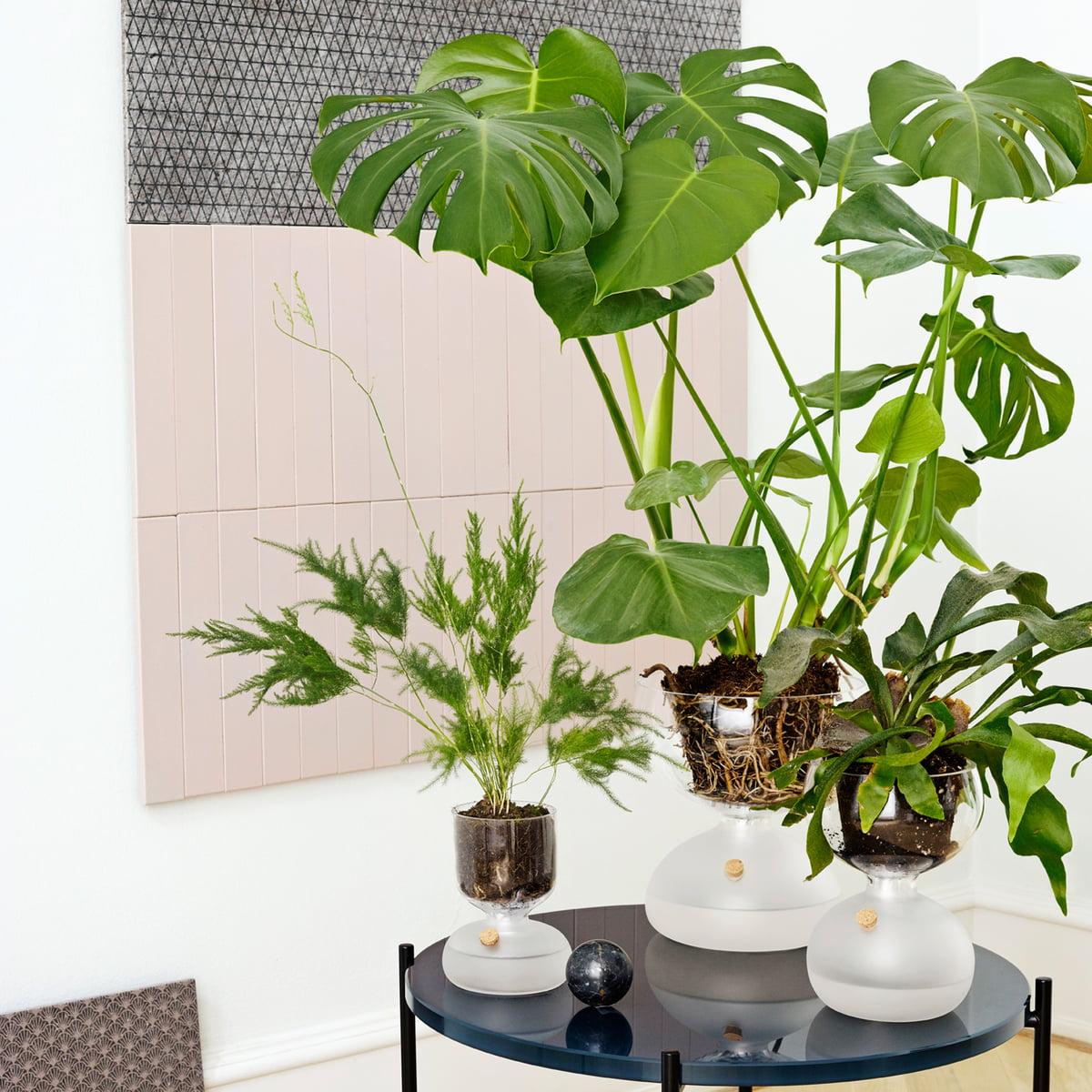 pot de fleur gaia d 39 holmegaard. Black Bedroom Furniture Sets. Home Design Ideas