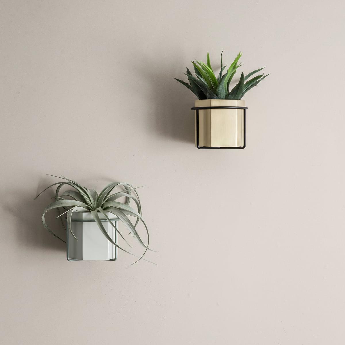 support de plante mural de ferm living. Black Bedroom Furniture Sets. Home Design Ideas