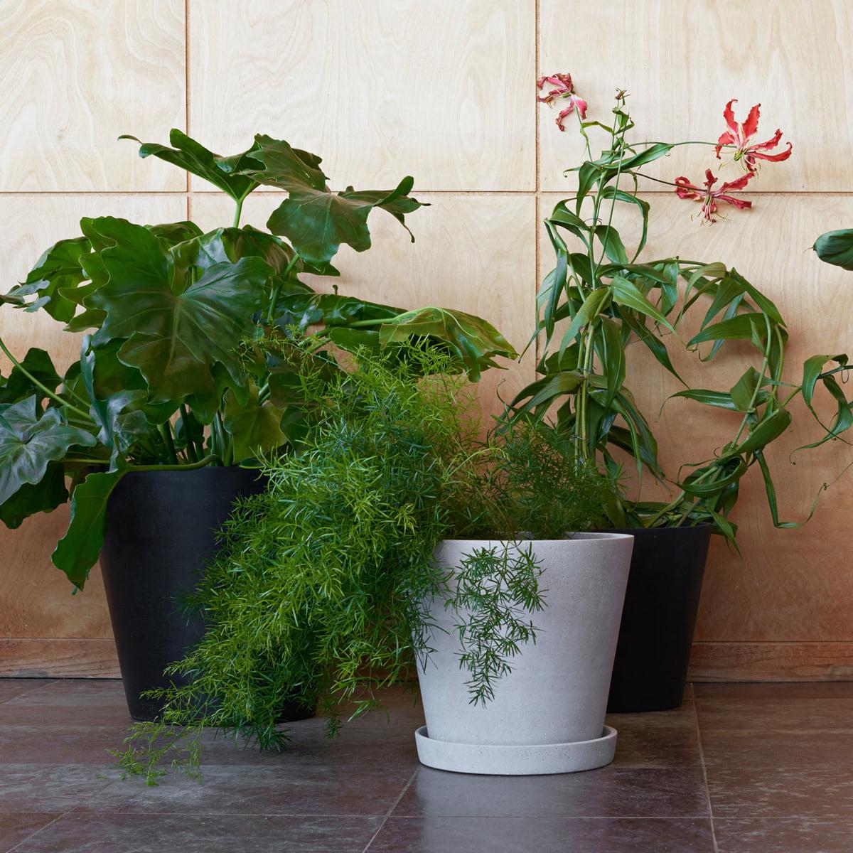 Pot De Fleur Avec Soucoupe Par Hay Connox