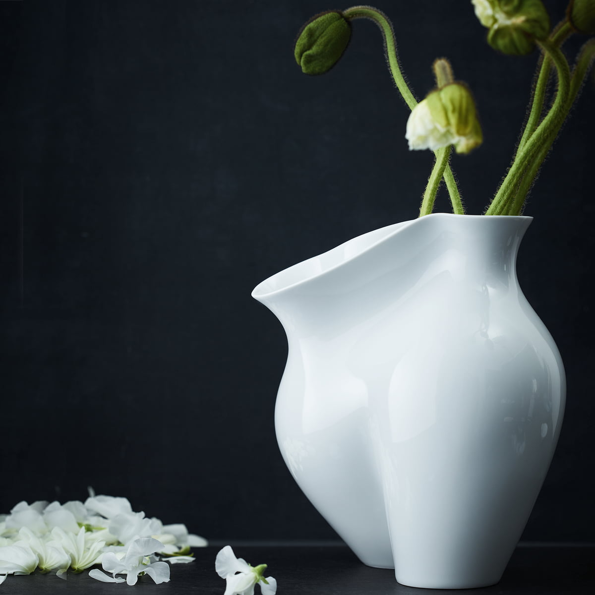 vase la chute de rosenthal connox. Black Bedroom Furniture Sets. Home Design Ideas