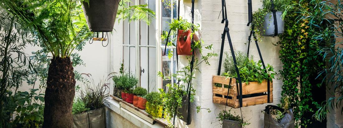 Bacsac Sac à plantes Baclong