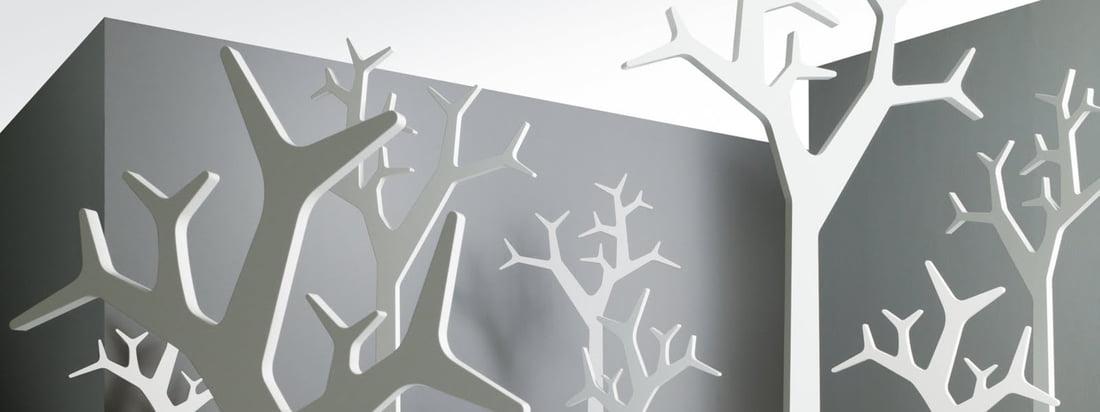 Banner du fabricant- Softline, 3840 x 1440
