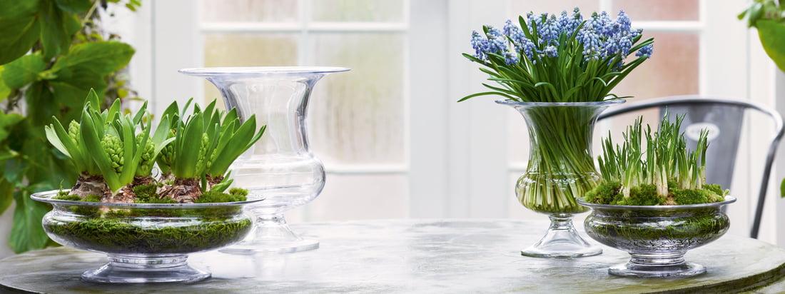 Holmegaard - Vase Old English - Bannière