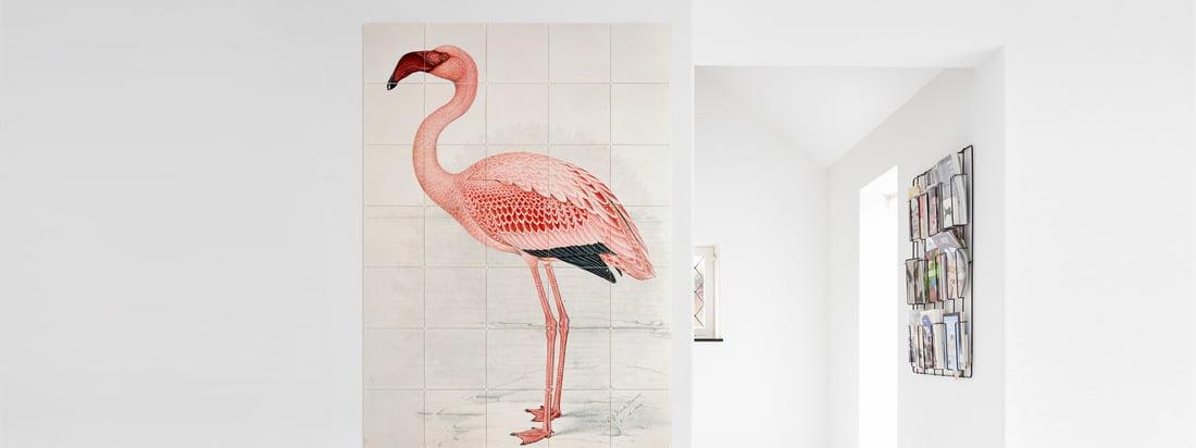 Design animal