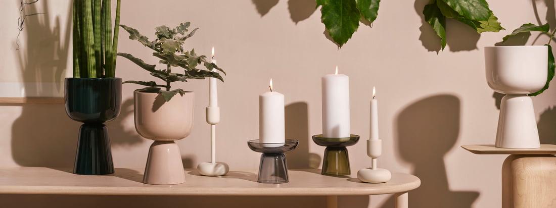 Iittala - Collection Nappula