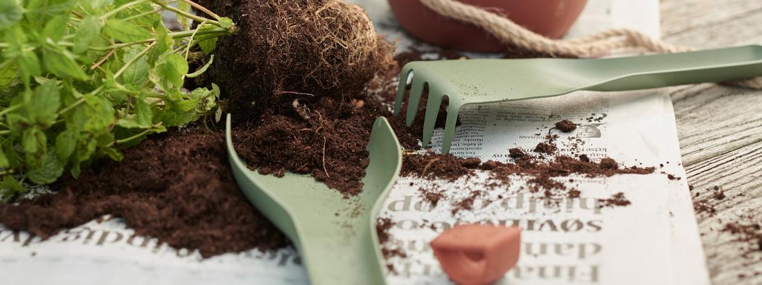 Topics : Plantation - Rig-Tig by Stelton - Green-It garden tool - Single image - Garden tool-green-plant-pot