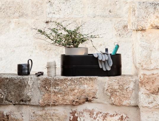 Découvrez une multitude de pots à fleurs, de récipients, d'arrosoirs et d'accessoires pour animaux!