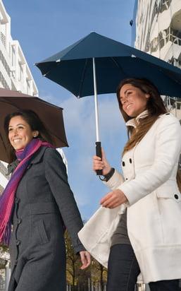 Accessoires pour le quotidien : parapluies pour les jours humides, grattes-givres pour l'hiver ainsi que cendriers pour la fête !