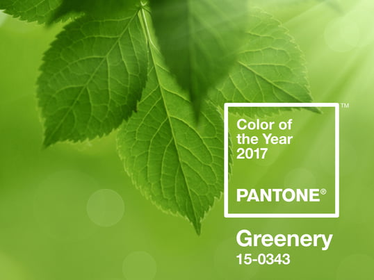 Couleur de l'année Pantone 2017 : Greenery.