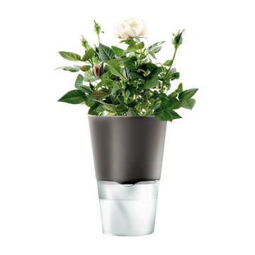 Pot de fleur à réserve d'eau par Eva solo