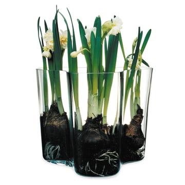 Iittala - Aalto Vase Savoy, transparent 160 mm