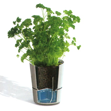 Rosti Mepal - Pot d'herbes Hydro - Fonction