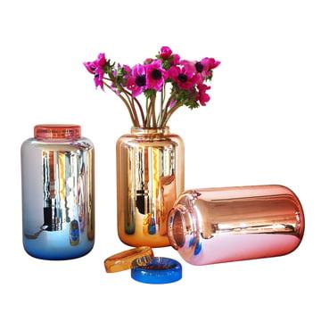 Pulpo - Container Vase - groupe, couleurs, avec fleur
