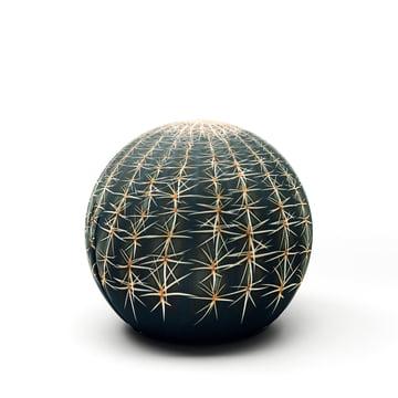Baleri Italia - Balle siège Tattoo cactus