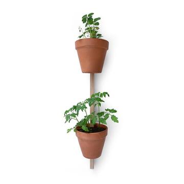 Edition Compagnie - Xpot, 2 pots