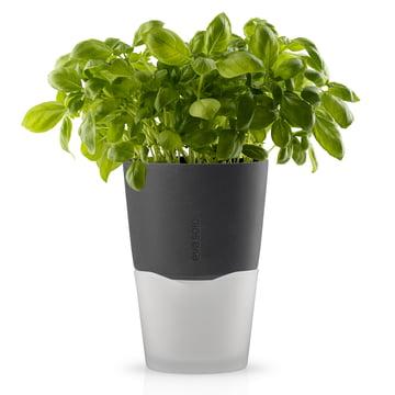 Eva Solo- Pot à herbes Ø 13 cm, gris pierre
