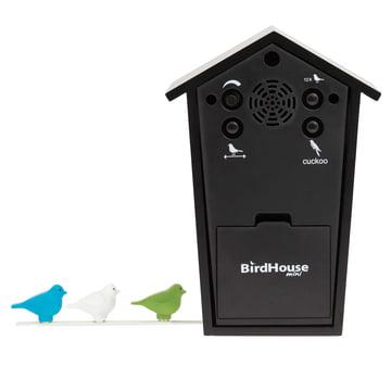 KooKoo - Bird House Mini, noir, vue arrière et oiseaux colorés