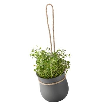 Rig-Tig by Stelton - Grow-It pots à herbes aromatiques, gris