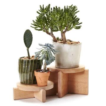 Podiums pour plantes en set de Areaware