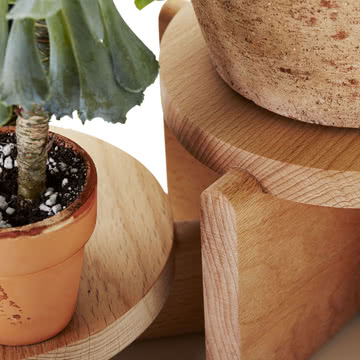 Areaware - Ensemble de podium pour plantes