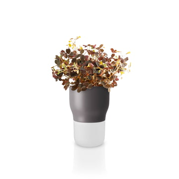 Pot à herbes aromatiques d'arrosage automatique Ø 9 cm d'Eva Solo