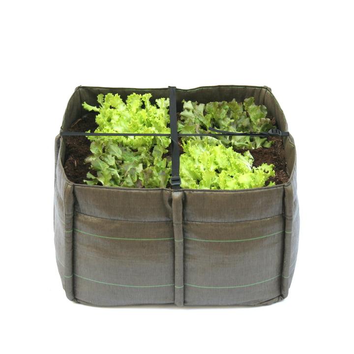 Bacsquare Sac de plantes 4, 140 l / Géotextile de Bacsac