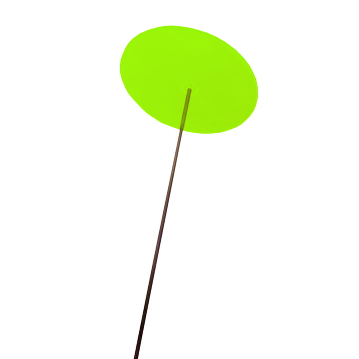 Cazador del sol - Capteur de soleil Uno, vert