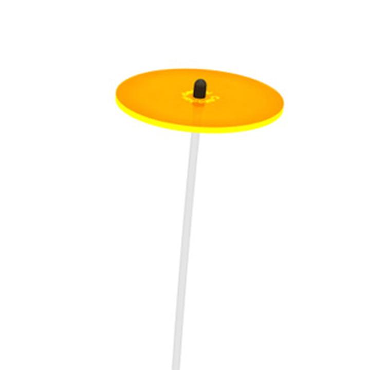 Cazador del sol - Mini, jaune