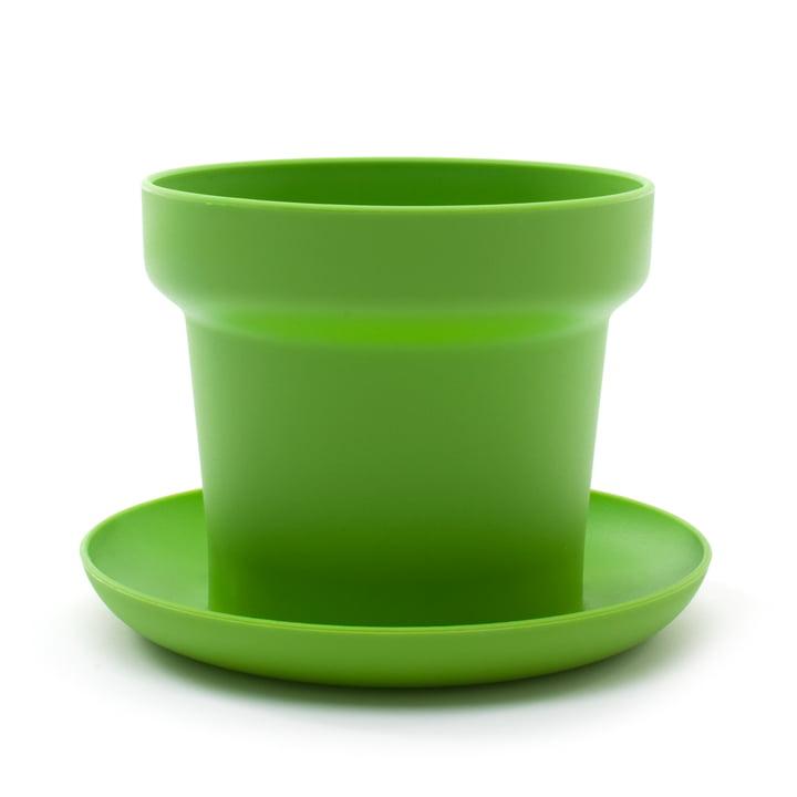 Authentics - Pot de fleur Green, vert