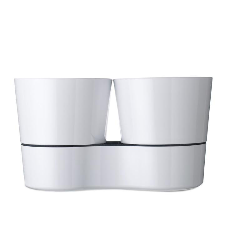 Rosti Mepal - Pot à herbes aromatiques Twin, blanc