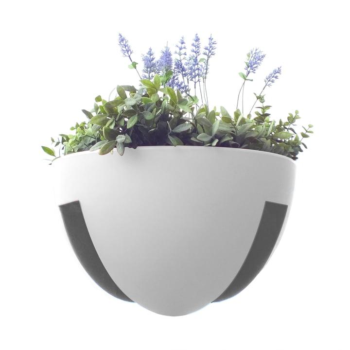 rephorm - Eckling Jardinière à plantes, blanc