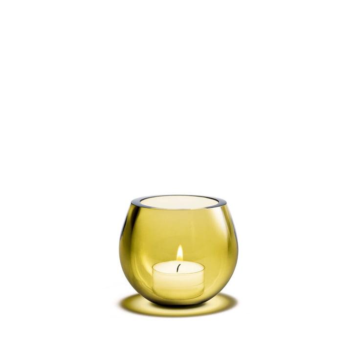 Cocoon Photophore bougie chauffe-plat de Holmegaard en bloom