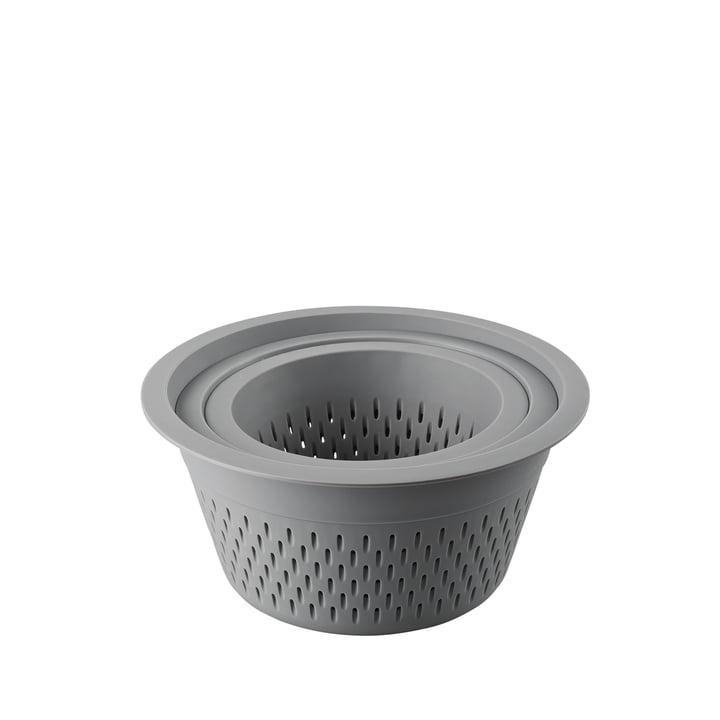 La passoire en plastique par lot de 3 de Thomas en gris