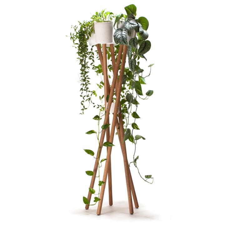 Le hochgarten d'urbanature en chêne avec cache-pot blanc