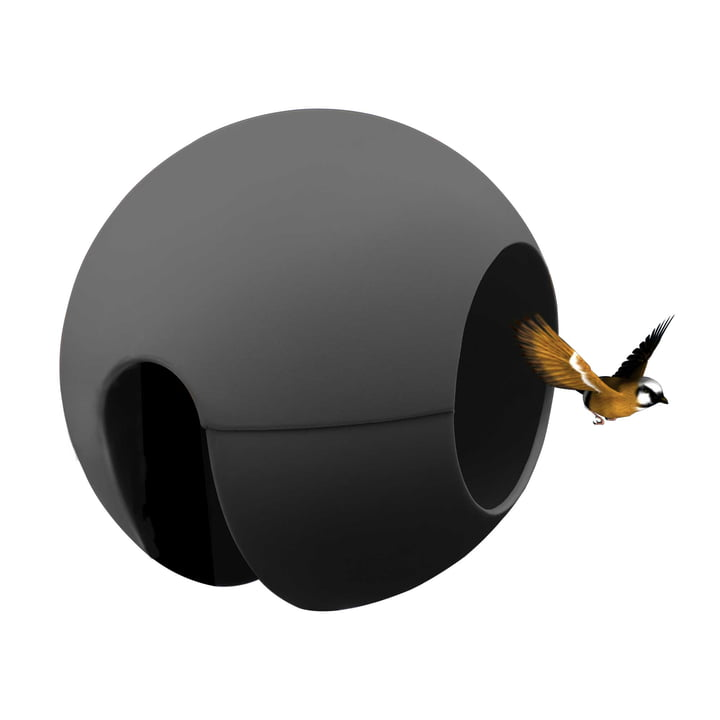 La mangeoire ballcony birdball de rephorm en anthracite