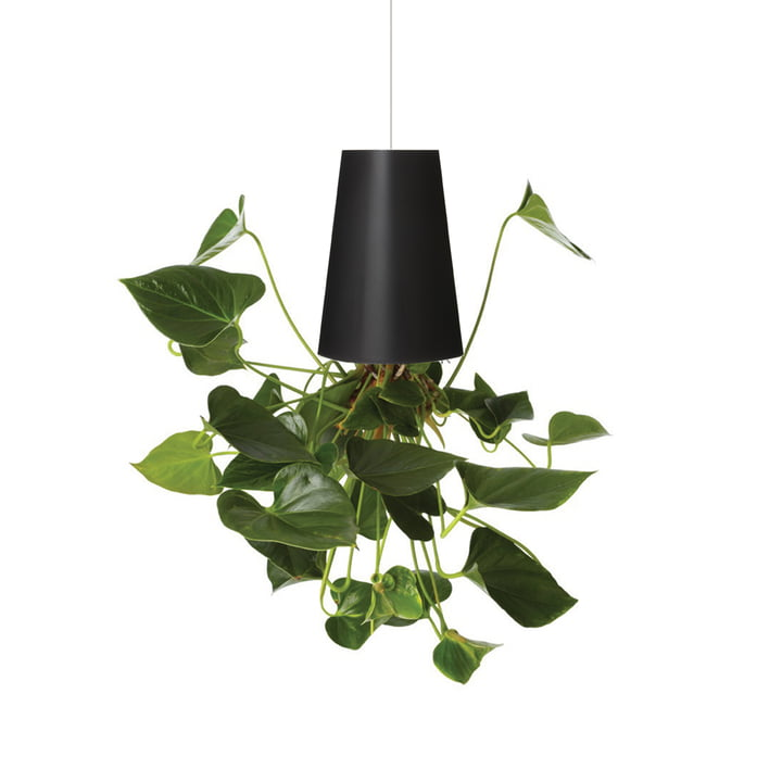 Boskke - Sky Planter Recycled Medium, noir