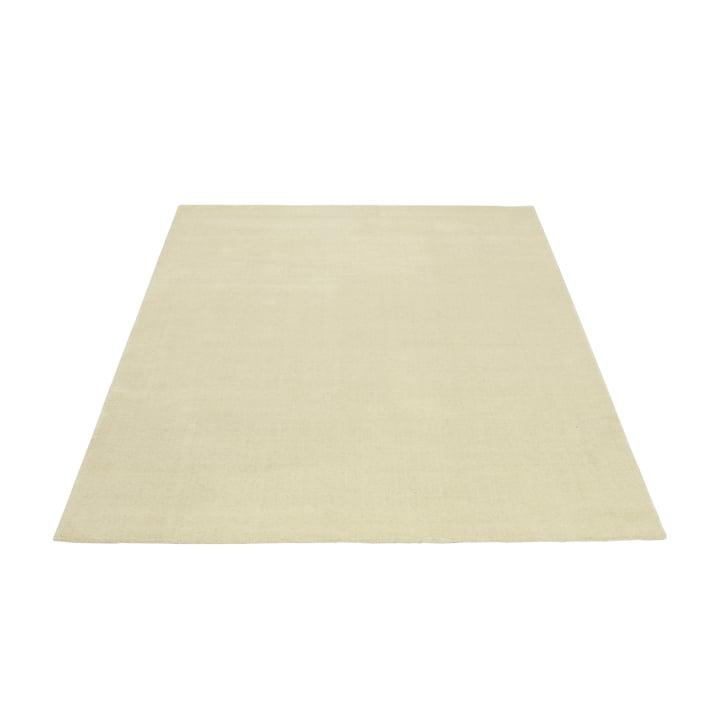 Le tapis Massimo - Earth 170 x 240 cm en crème