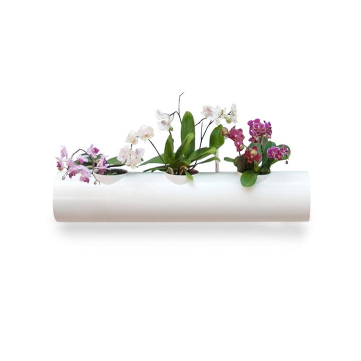 Tube supplémentaire pour jardin suspendu de urbanature en blanc