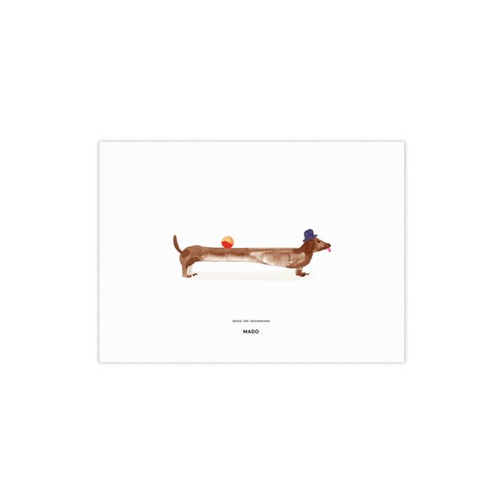 Doug the Dachshund de Paper Collective , 40 x 30 cm