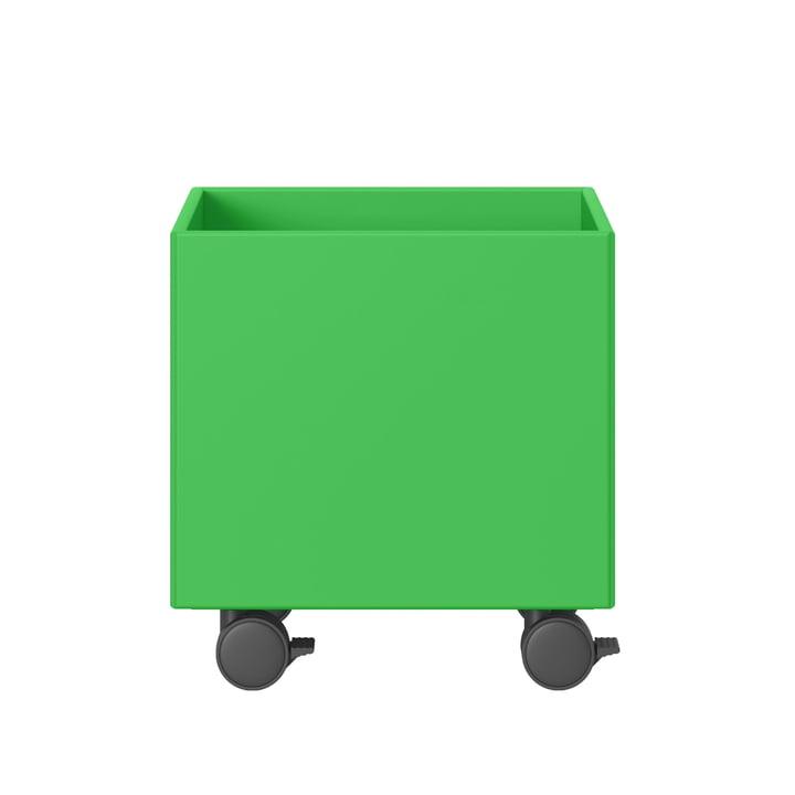 Boîte à jouets Montana en umami vert