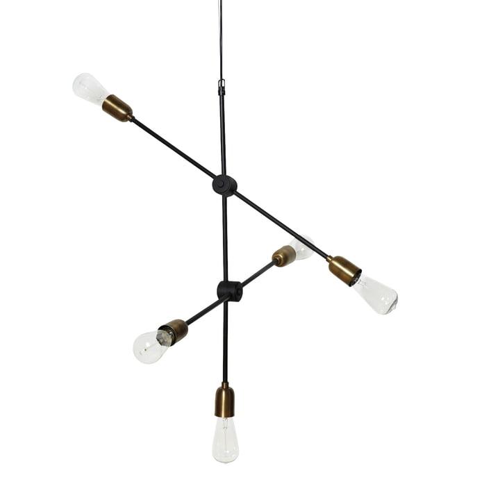 Lampe à suspension moléculaire 5 illuminant de House Doctor en noir / laiton