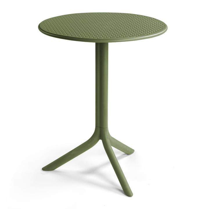 Table de marche, agave de Nardi