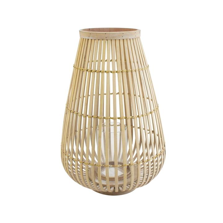 Un grand vent de bambou léger dans la nature