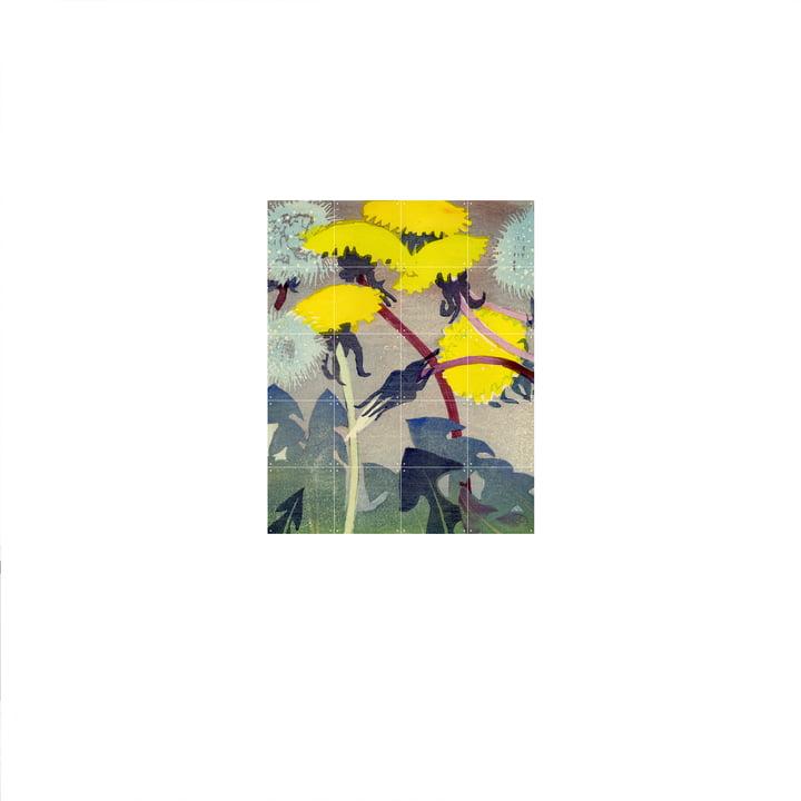 Pissenlit ( Mabel Royds ) Affiche de IXXI en 80 x 100 cm