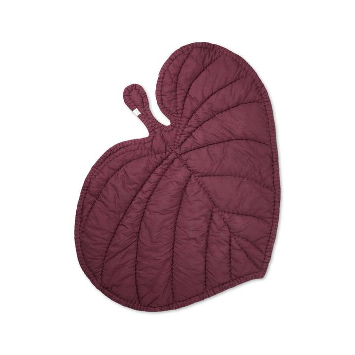 Leaf Jouer à la couverture depuis Nofred la Bourgogne