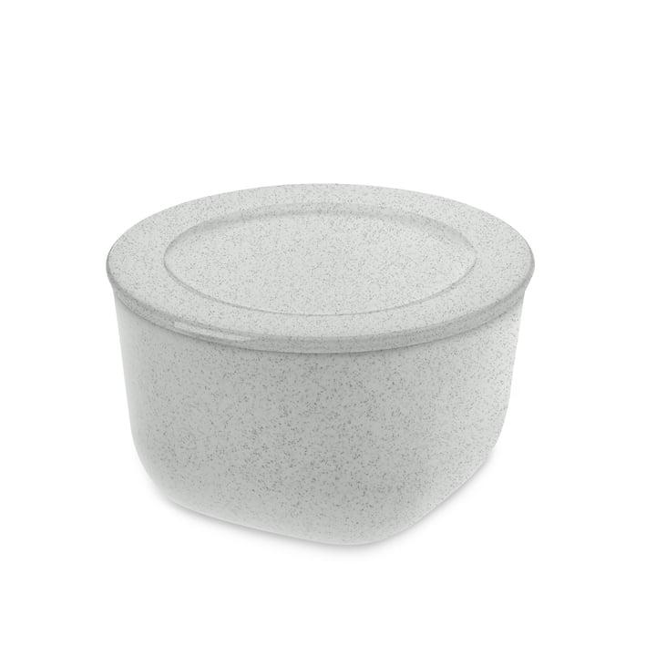 Connect M Boîte de Koziol conservation 1 l en gris organique