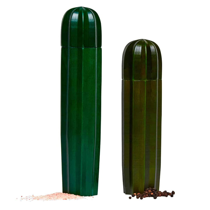 Cacti Moulin à sel et à poivre (lot de 2), vert de Doiy