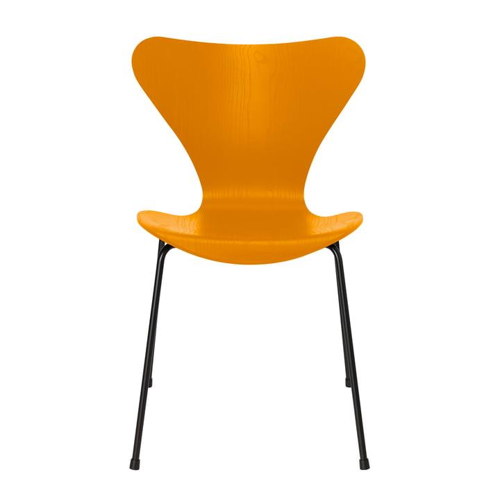 Chaise Série 7 de Fritz Hansen en couleur jaune brûlé de frêne / cadre noir