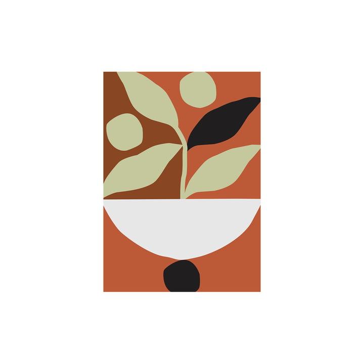 Maceta Affiche de Paper Collective , 30 x 40 cm